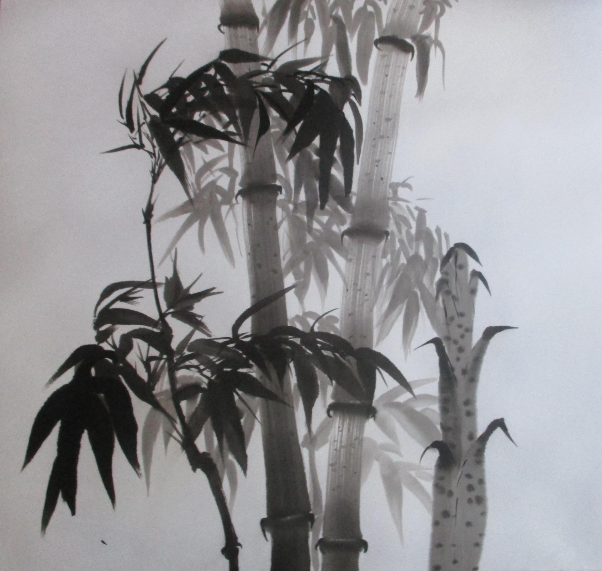 Bambous Thuy