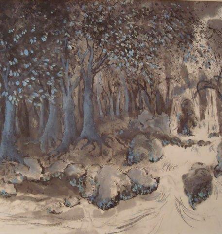 Cascade en forêt Danielle Delfino