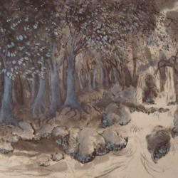 D.Delfino-Cascade en forêt