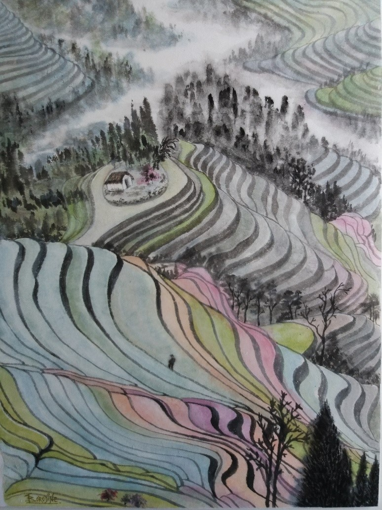 Damiers des rizières Yunnan R.P.C