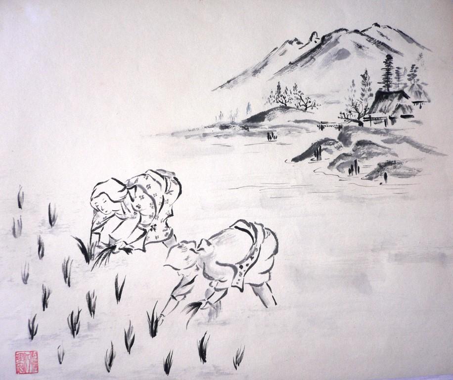 Femmes japonaises dans la rizière
