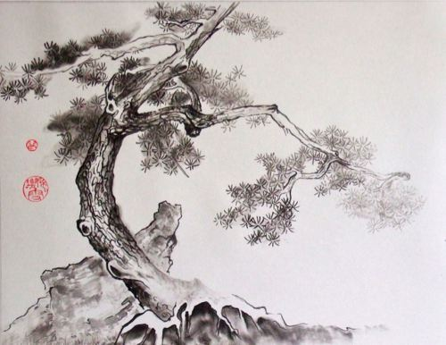 Le pin et le rocher marie christine pouchelle 1