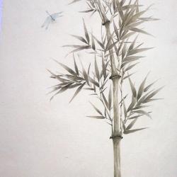 Les bambous et la libellule bleue