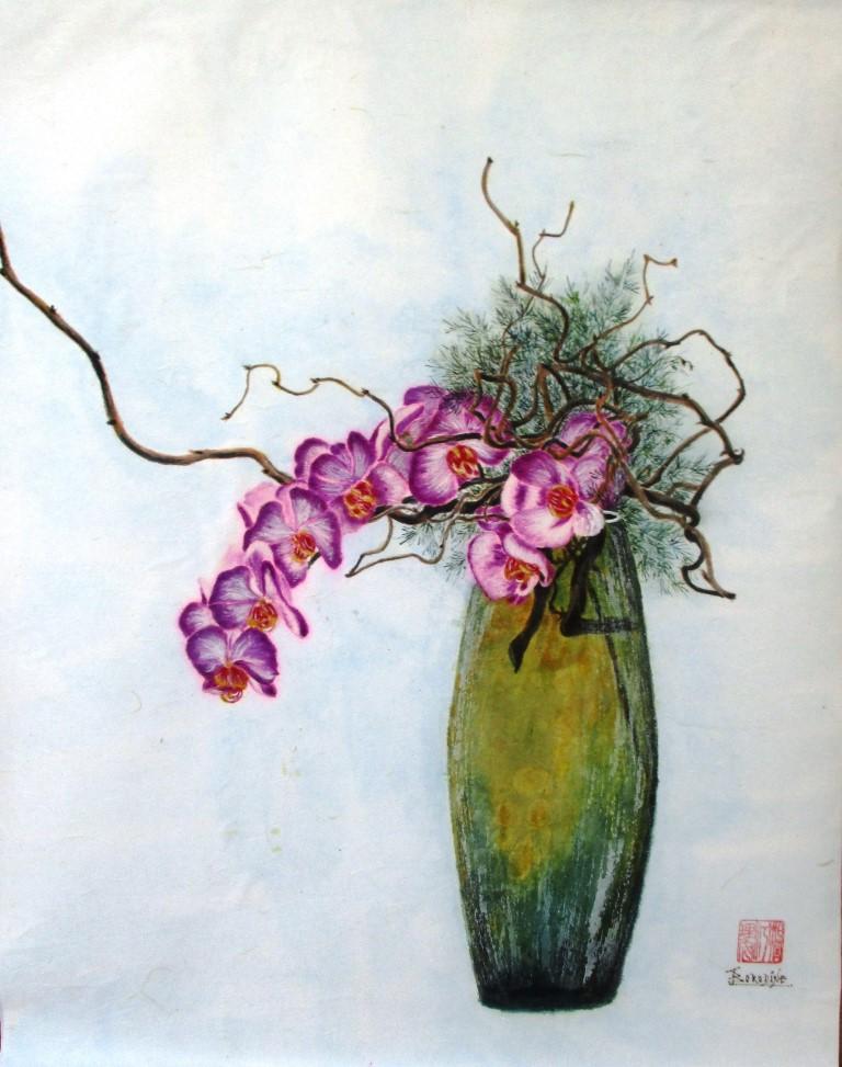 Orchidées non nommées