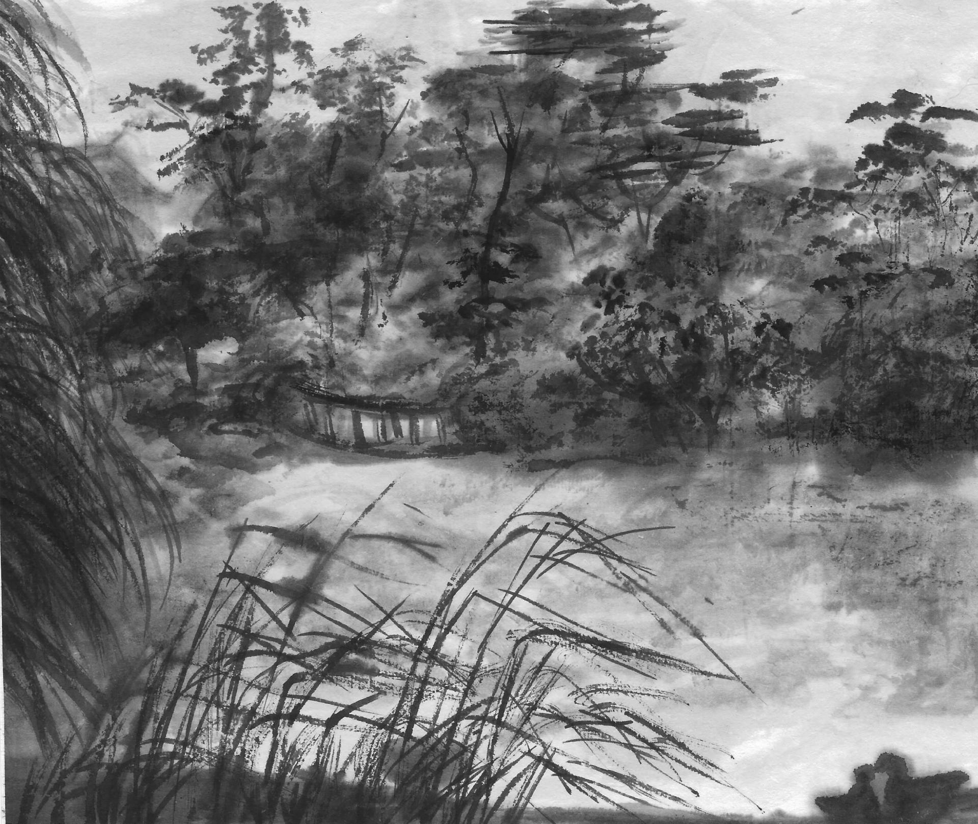 Paysage nocturne en monochrome les deux canards