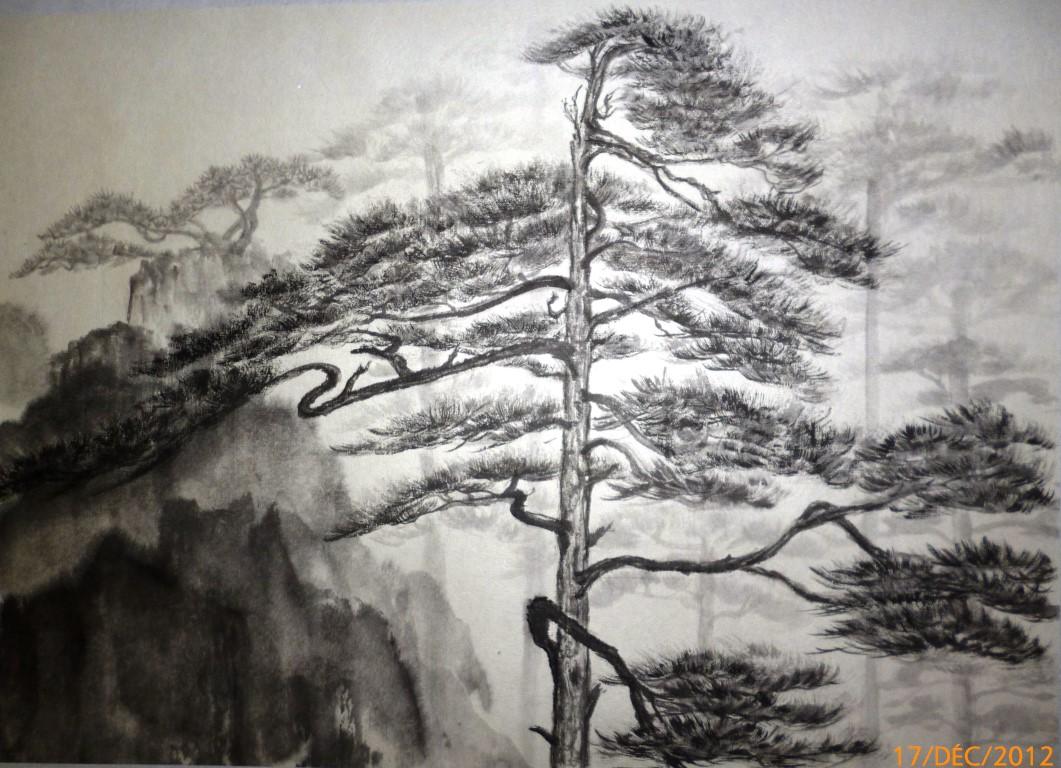 Pin du Huangshan