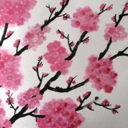 Prunus Corinne Howlett