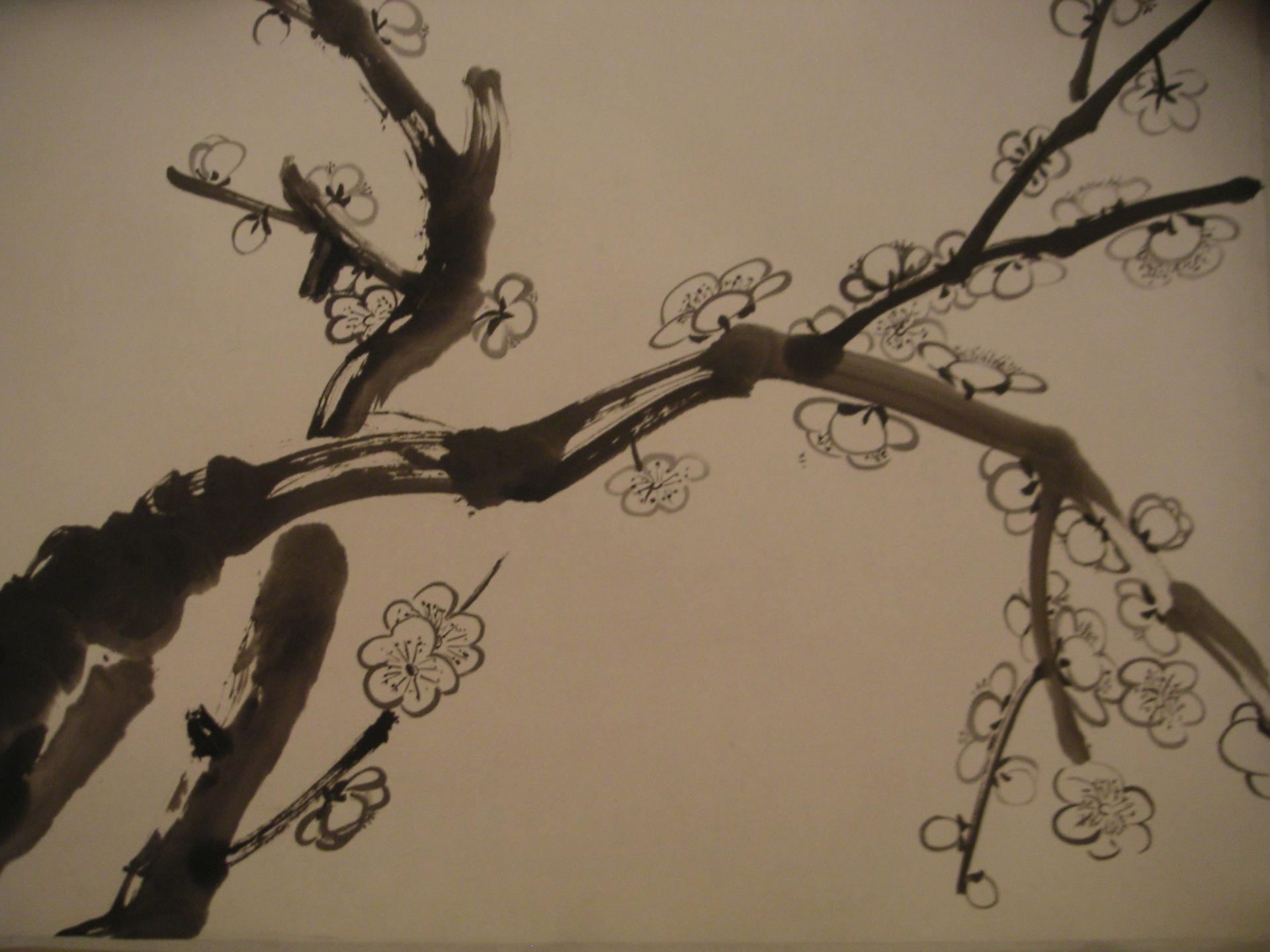 Prunus monochrome Amelie Besnard