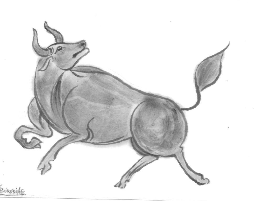 Puissance du taureau